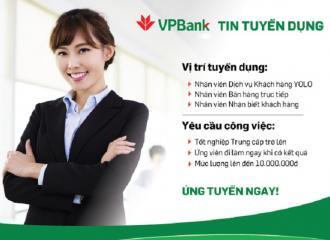 Ấn tượng với mẫu CV VPBank thu hút chinh phục nhà tuyển dụng