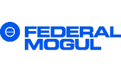 Federal - Mogul ( Viet Nam) Ltd.