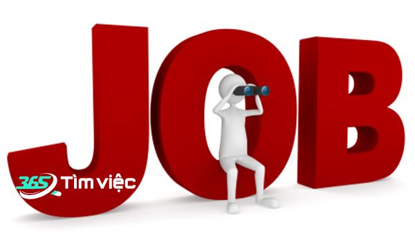 tìm việc làm tại kênh timviec365.vn