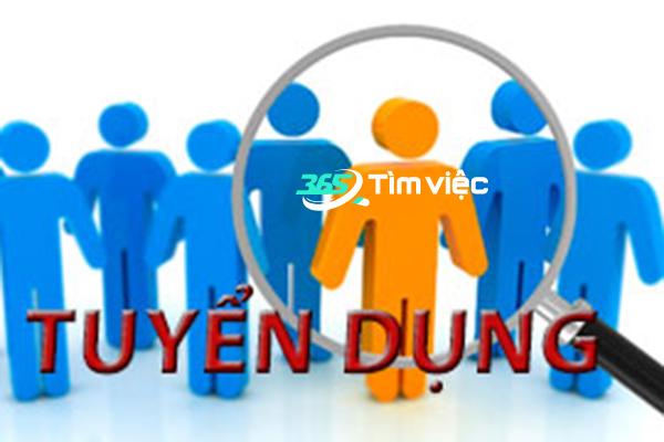 tìm việc làm tại hệ thống timviec365