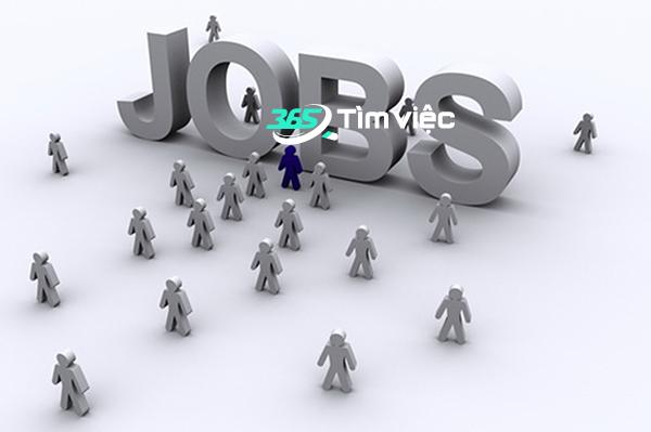 tìm việc làm trên hệ thống tìm việc 365