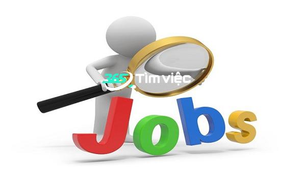 tìm việc làm trên web tìm việc 365