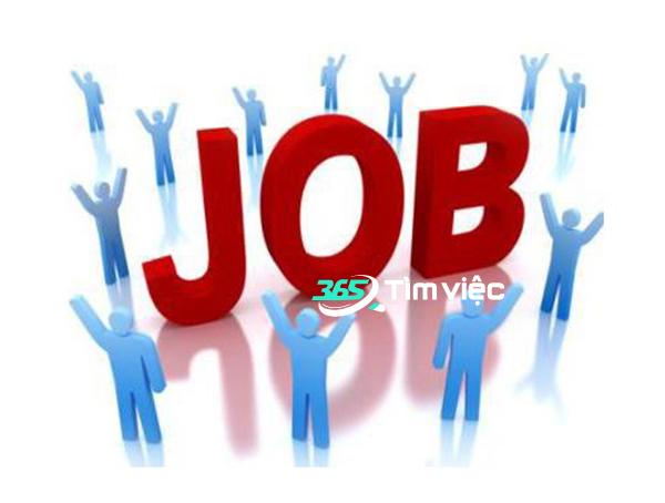 tìm việc làm tại phường Ngọc Khánh