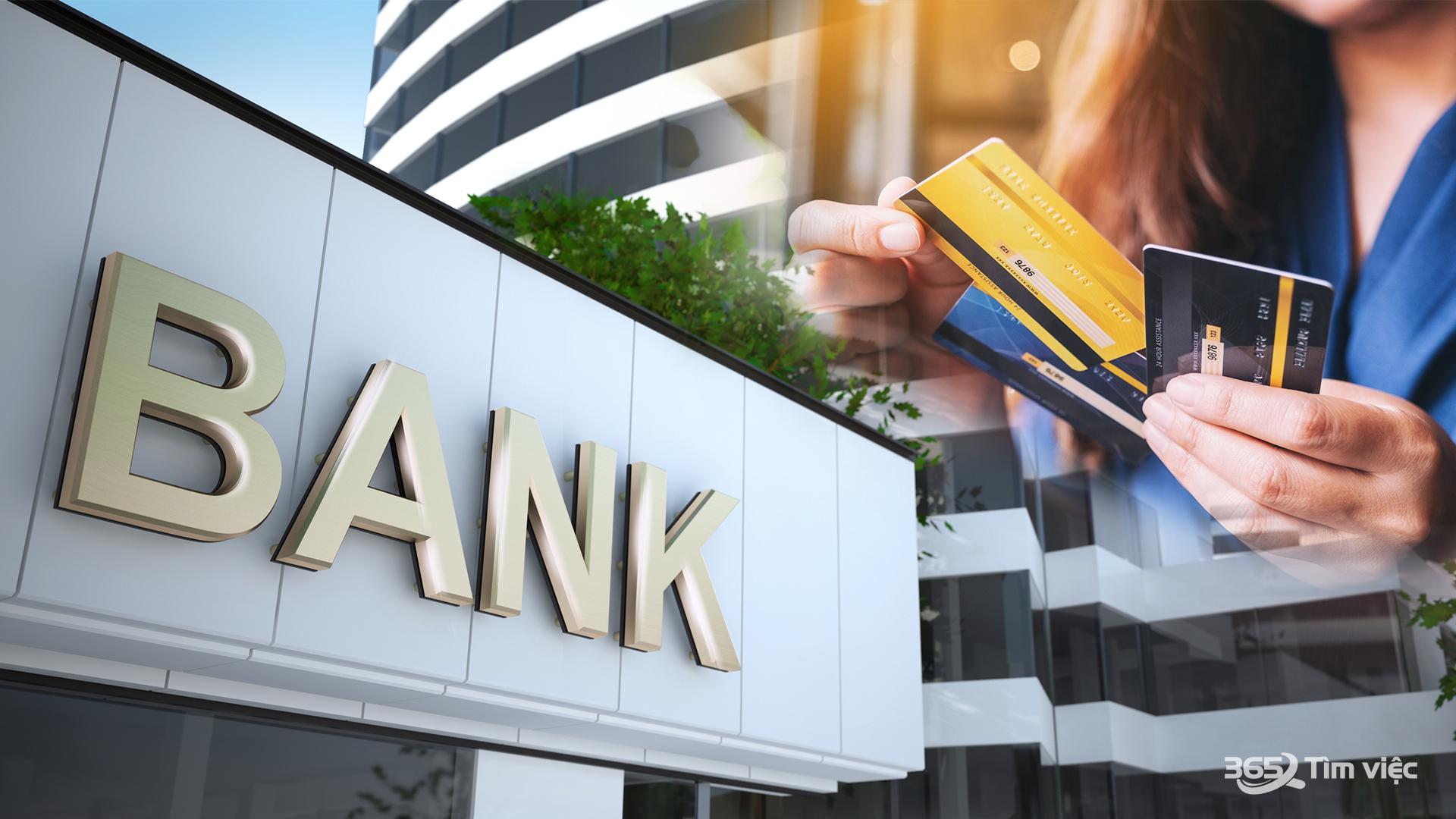 Cách trình bày nội dung CV Vietcombank - phiếu dự tuyển phần mở đầu