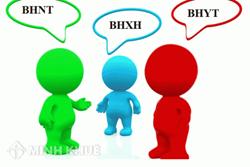 Kế hoạch sử dụng phôi sổ BHXH, thẻ BHYT